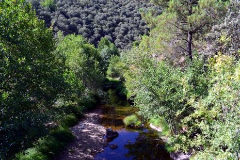 Sierra Francia 39