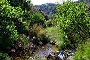 Sierra Francia 42